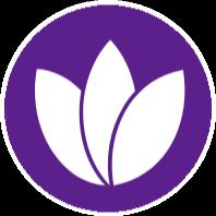 Webhost 365